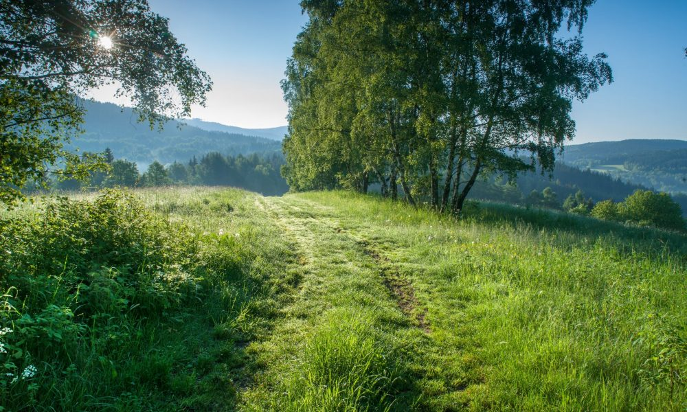 Kasperske Hory krajina