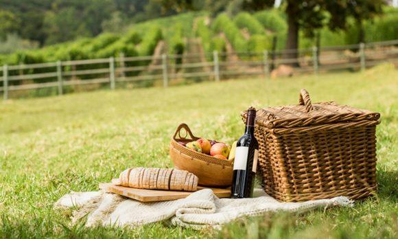Piknik na Šumavě