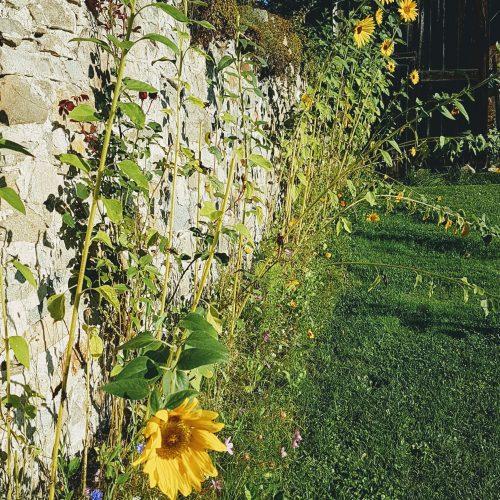 zahrada Nebespan